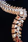 Mushida's z-shaped spine 2